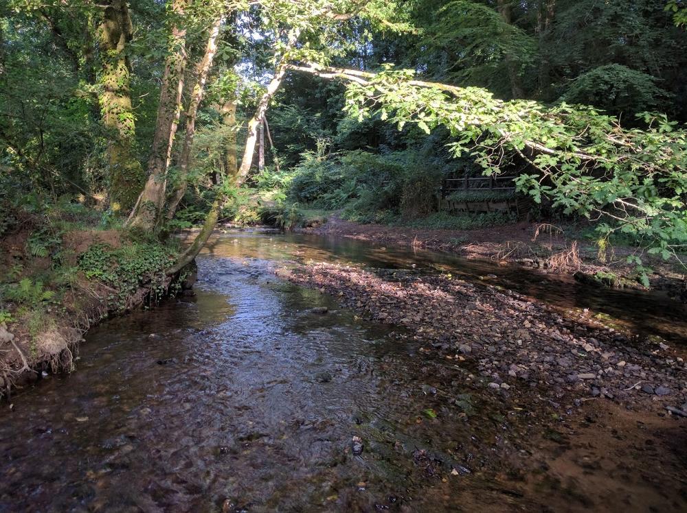 ruisseau-moros2