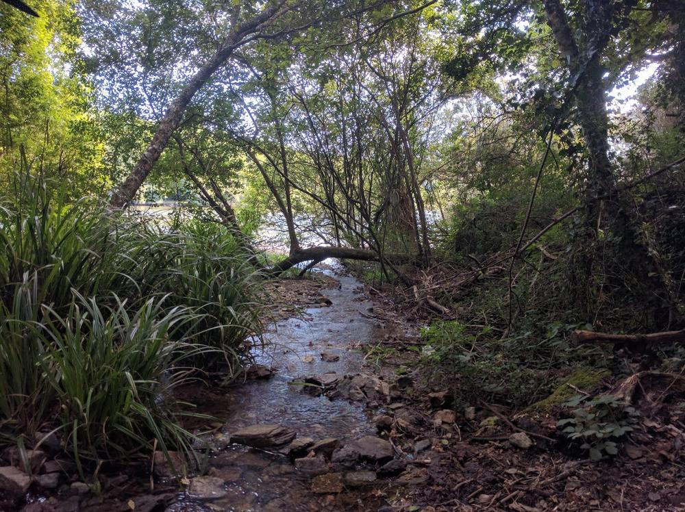ruisseau-moros