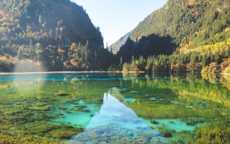 Lac de la Vallée de Jiuzhaigou | Chine