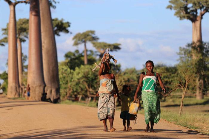 Voyagage à Madagascar