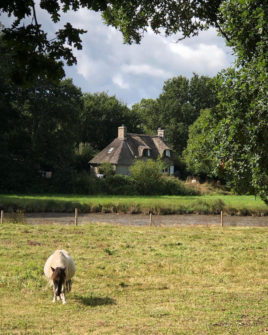Bois de Penfoulic à Fouesnant | Bretagne